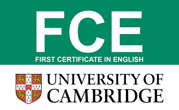 Grammar And Vocabulary For First Certificate : Free
